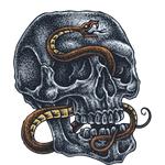 """Переводная татуировка """"Череп и змея"""""""