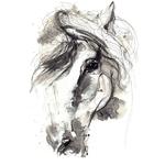 """Переводная татуировка """"Лошадь в серых тонах"""""""