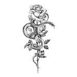 Роза и змея